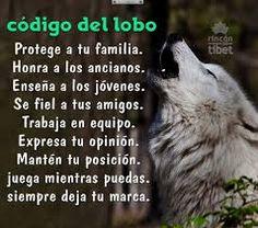 57 Mejores Imágenes De Frases Lobo Solitário One Man Wolf Pack