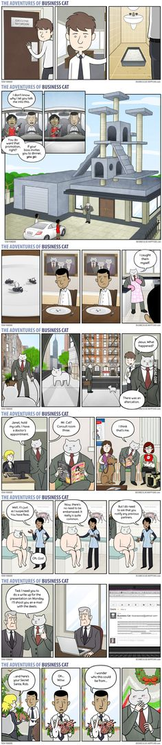 Business Cat Part 3 - 9GAG