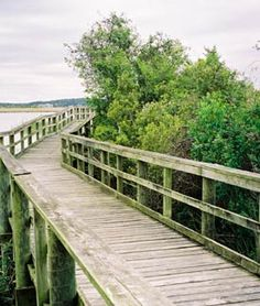 The boardwalk has a nice view of the Mobile Delta. Meaher State Park Alabama. Located in Spanish Fort; accessed from Mobile Bay Causeway; surroounded by Mobile Bay Wetlands Esturay