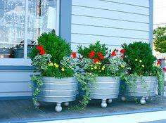 jardins com plantas floridas e pedras nos canteiros e espalhados.
