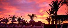 missä on lämmintä marraskuussa Mauritius, Barbados, Goa, Sri Lanka, Vietnam, Dubai, Travel Tips, Florida, Celestial