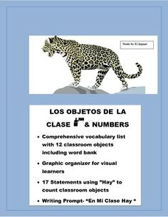 "This five page worksheet package will allow you to introduce classroom objects to students and teach them how to describe a classroom using ""hay""  1- Vocabulary worksheet - 12 objetcs with word bank  2-Graphic organizaer to help visual learners learn and reinforce vocabulary concepts  3- 17 Statements to teach students to describe objects around the classrooms."