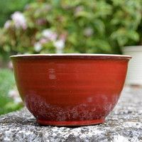 Horn, Decorative Bowls, Tableware, Dinnerware, Tablewares, Horns, Dishes, Place Settings, Antlers