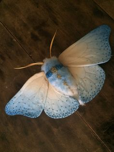 Large Blue Moth Soft Sculpture by Molly Burgess Designs Textile Sculpture, Soft Sculpture, Textile Art, Sculptures, Fabric Butterfly, Butterfly Crafts, Fabric Birds, Felt Embroidery, Textiles