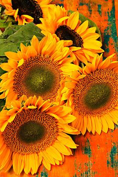 Sunflowers for Jackie (Thank you Lisa, they always make me smile :-)