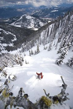 #Trees and #powder are part of the @Sarah Chintomby Chintomby Therese Lodge Mountain Resort famed terrain.