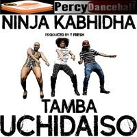 1 - Ninja Kabhidha - Tamba Uchidaiso (T Fresh 2016) by Percy Dancehall Reloaded on SoundCloud