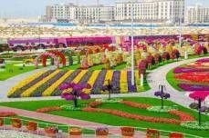 colorfull garden in Dubai <3 love it <3