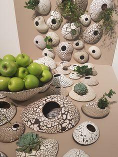 Önskar du dig en vertikal växtvägg? Då kan Cajsa Carlenius vaser vara något för dig!