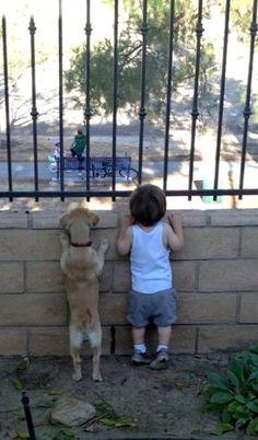 I cani e i bambini...