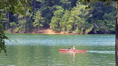 Tims Ford State Park — Tennessee State Parks  South-central TN, driving distance to Chattanooga, boat rentals