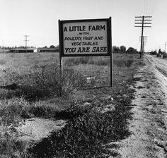 Dorothea Lange, Real Estate Sign, Riverside County, California, 1937, gelatin silver print