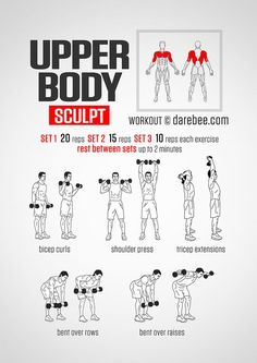 Hello, Here is a great toning workout for you today. It is a full body sculpting workout that does not use weights but will get to those small supporting muscels to give you great definition. Check out the video here… E. Arm Workout Men, Gym Workout Tips, At Home Workouts, Workout Exercises, Weight Exercises, Workout Body, Upper Body Dumbbell Workout, Dumbbell Exercises For Men, Arm Workouts For Men