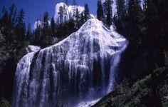 Union Falls, Yellowstone Nat'l Park