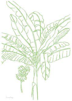 Really Cool Drawing Of A Banana Tree Really Cool Paintings