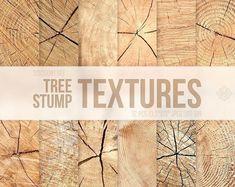 #tree #stump #textures #wooden #wood #backgrounds #brown #neutral #scrapbook