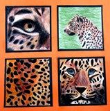 Four views of an animal