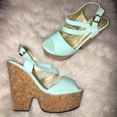 """Mint Wedge Platform Heels Brand new Mint Wedge Platform Heels in Size 8.  Heel measures 4"""" inches with a 1.5"""" inch platform. Extra comfy and the color is gorgeous! Shoes Wedges"""