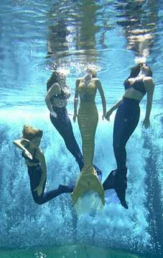 Go to see the Weeki Wachee Mermaids in Florida