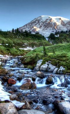 Day trips from Seattle!
