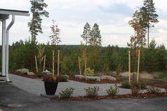 Ympäristöön sopiva #betonikiveys ja #kasvillisuus - #paving #trees #shrubs Shrubs, Trees, Gardens, Building, Plants, Tree Structure, Buildings, Planters, Wood