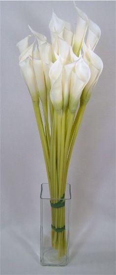Silk Calla Lilies White (24 Flowers) $30.96/ $1.29 each