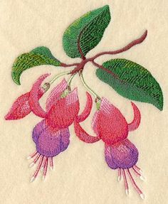 Machine Embroidery Designs at Embroidery Library! - Color Change - C4244