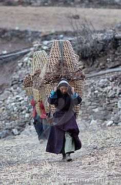 Collected firewood Tibet Religions Du Monde, Cultures Du Monde, World Cultures, Nepal, Dalai Lama, Mongolia, People Around The World, Around The Worlds, Fotografia