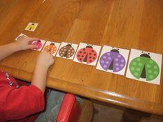 ladybug size sort from COAHS the measured mom Ladybug Math for Preschool, Kindergarten & Grade Preschool Bug Theme, Free Preschool, Preschool Kindergarten, Teaching Math, Bug Activities, Learning Activities, Grade 5 Math Worksheets, Grouchy Ladybug, September Preschool