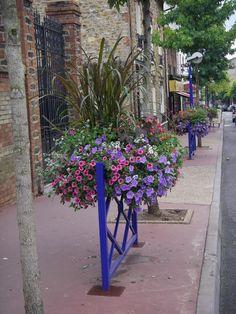 flower box Window Box Flowers, Window Boxes, Flower Boxes, Landscape Elements, Flower Containers, Garden Arbor, Garden Windows, Container Gardening, Cities