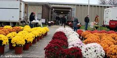 BUY FRESH ~ BUY LOCAL - Woodstock Farmers Market's Winter Market at 1102 McConnell Rd in Woodstock, IL. Saturdays 9-noon.
