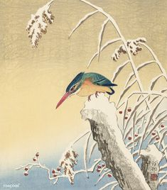 Free Public Domain | www.rawpixel.com | Kingfisher in the snow (1925-1936) by Ohara Koson (1877-1945)
