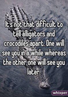 alligators/crocodiles- LMAO, I laughed way to hard at this