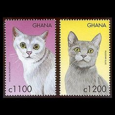 cat postage stamps from Ghana