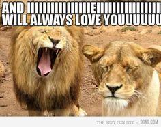 follow us! we have hundreds of hilarious pics! :) http://media-cache8.pinterest.com/upload/188166090650985804_QOAT7rgT_f.jpg frobb funny