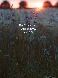 Don't be afraid, just believe.