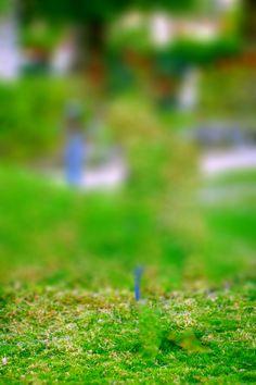 Image Result For Cb Edit Background Hd Cb Background Pinterest