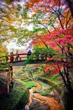 Repined . . . . Honeymoon ideas.  Bridge of the Kappa, Japan