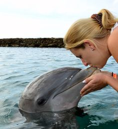 Swiming with dolphins @ Key Largo - Florida. Woww what an experience