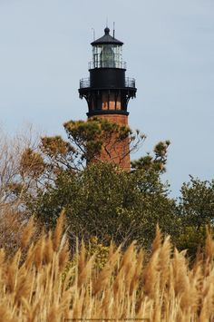 *Currituck Beach Lighthouse ~ Outer Banks, NC-had a great view. North Carolina Lighthouses, North Carolina Homes, Carolina Usa, Lighthouse Lighting, Lighthouse Photos, Outer Banks Nc, Safe Harbor, Beacon Of Light, Coastal Living