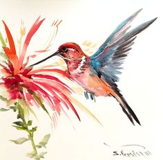 Flying Hummingbird Original watercolor painting 11 by ORIGINALONLY