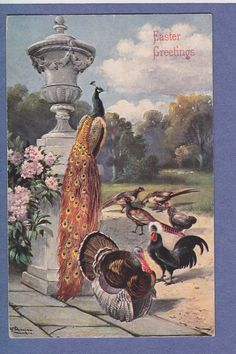 0211* A/S ALFRED SCHONIAN VINTAGE PC PEACOCK PHEASANTS BIRDS TURKEY | eBay