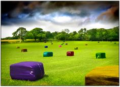Multicolored Bale Fantasy by Mal Bray Photographer. Photography.
