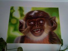 Mono de yati