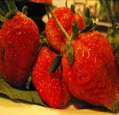 Strawberries is beneficial for patients who are suffering from Gout, liver tonic, improving digestion and arthritis.  http://www.buy-diclofenac.com/