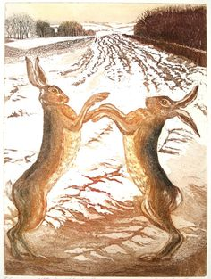 Boxing Hares original Etching and Aquatint by SallyWinterEtchings