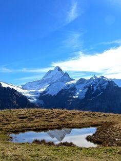 Grindelwald First: Switzerland as its best! #jungfraurailways #jungfraubahnen www.rapunzel-will-raus.ch