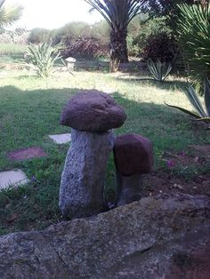 una copia dei funghi di pietra.