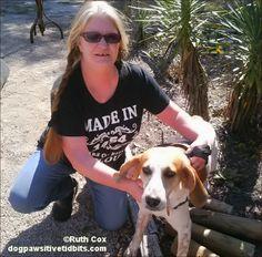 Walk, Foster, Adopt A Dog - Persona Paper