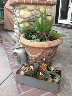 100  degrees outside and I still played in the garden. Planted some new containers I found at antique shops. I mixed Coleus, succulents and begonias for the shade.